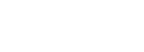 The Language of Brands: A Systemic Functional Linguistics Approach to Branding